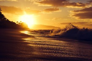 Experience North Shore