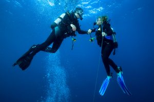 Best Scuba Diving Spots Around Oahu